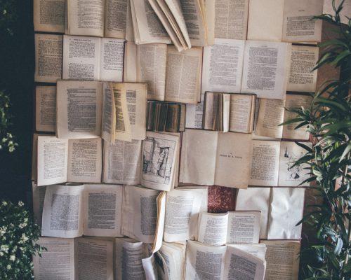 Mariage-alice-au-pays-des-merveilles-photoboth-livres-2-studio-aloki
