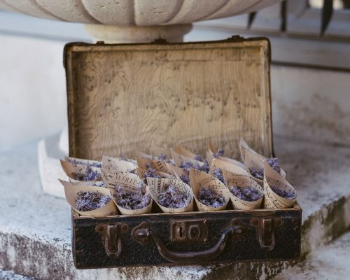 Cornets-de-lavande-sortie-des-maries-studio-aloki